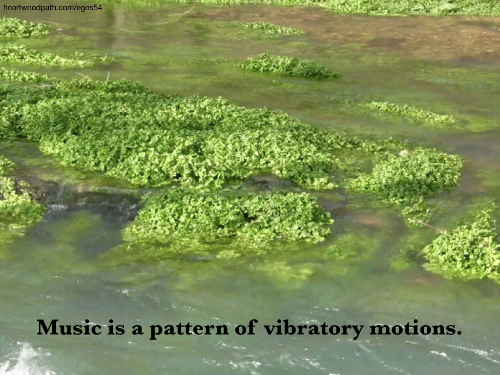 Picture river plants quote Music is a pattern of vibratory motions