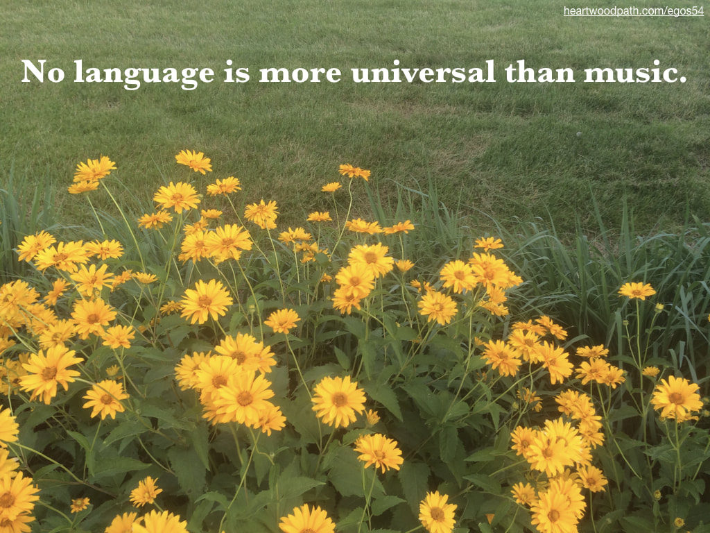 Picture yellow flowers grass quote No language is more universal than music