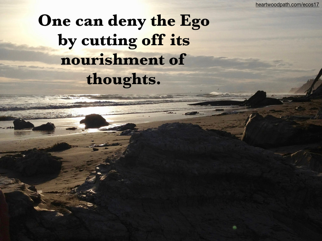 Picture sunshine beach boulders quote One can deny the Ego by cutting off its nourishment of thoughts