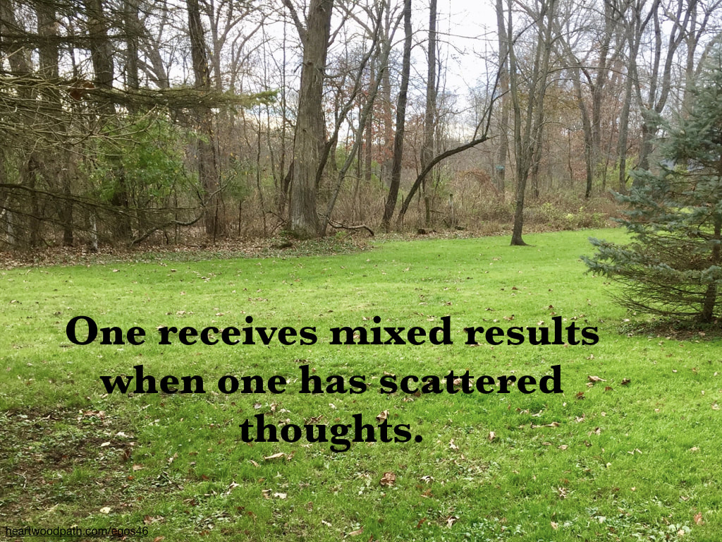 Picture forest grass quote One receives mixed results when one has scattered thoughts