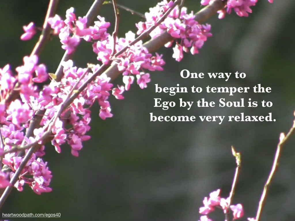 Picture pink flowers tree quote One way to begin to temper the Ego by the Soul is to become very relaxed
