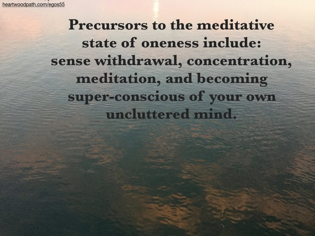Picture sunset reflection on ocean quote Precursors to the meditative state of oneness include: sense withdrawal, concentration, meditation, and becoming super-conscious of your own uncluttered mind