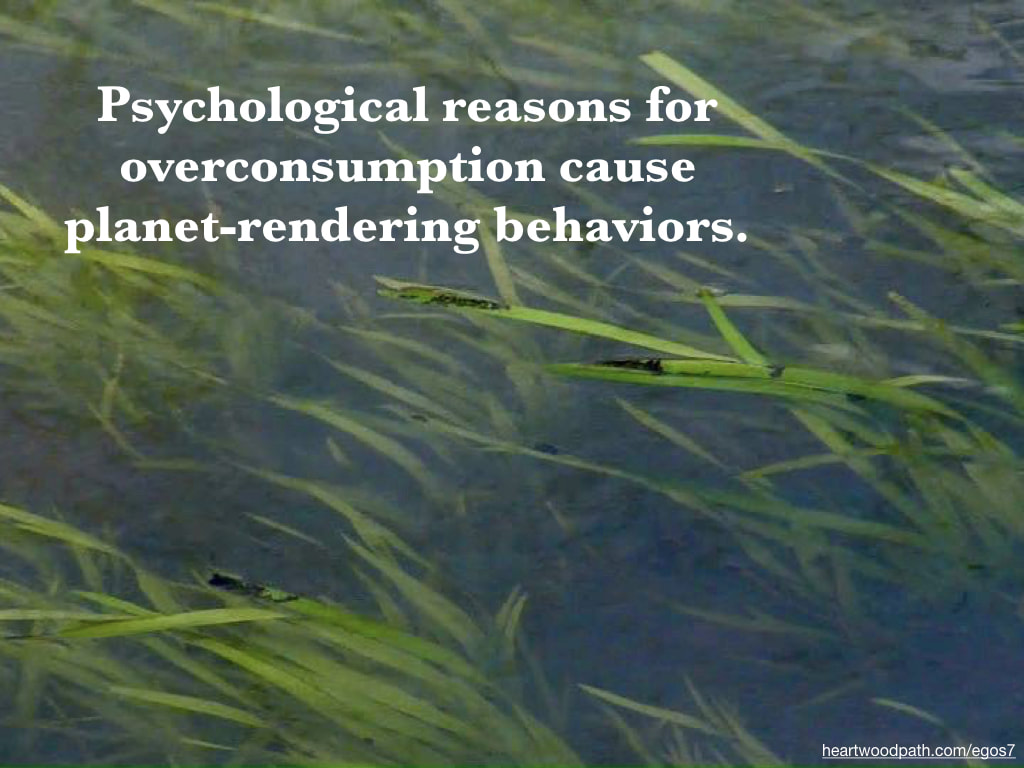 Picture grass underwater quote Psychological reasons for overconsumption cause planet-rendering behaviors