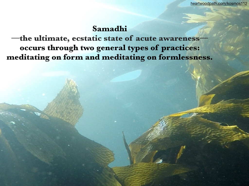 Picture underwater seaweed quote Samadhi--the ultimate, ecstatic state of acute awareness––occurs through two general types of practices: meditating on form and meditating on formlessness