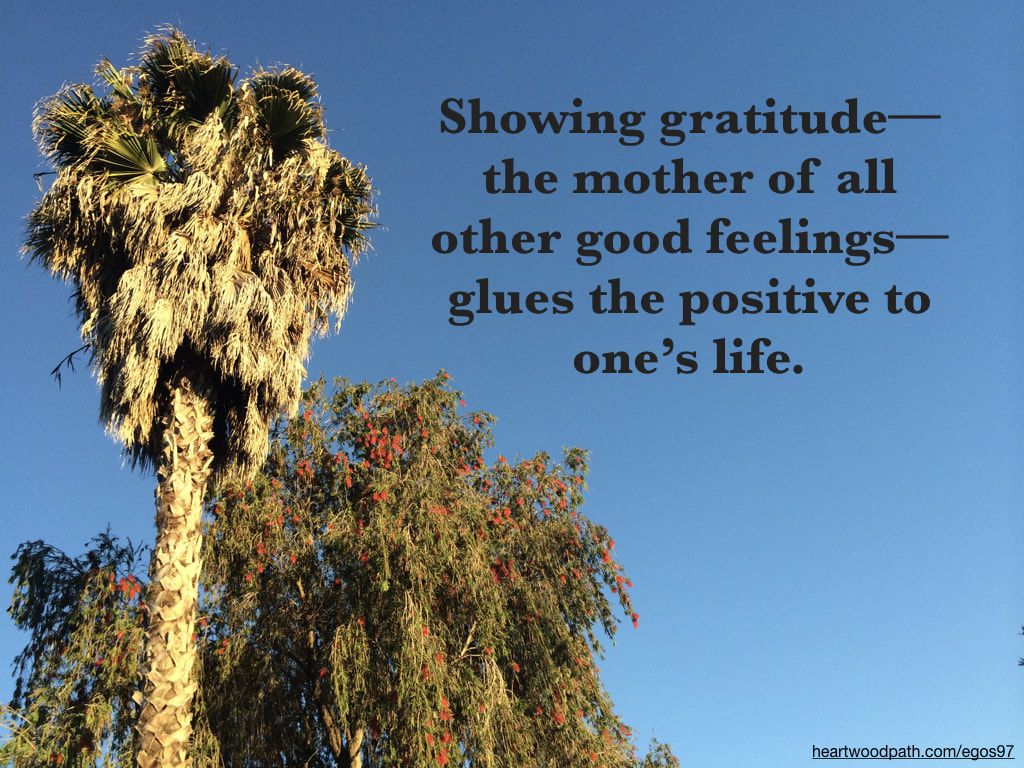 Picture palm tree bottle brush tree quote Showing gratitude––the mother of all other good feelings––glues the positive to one's life
