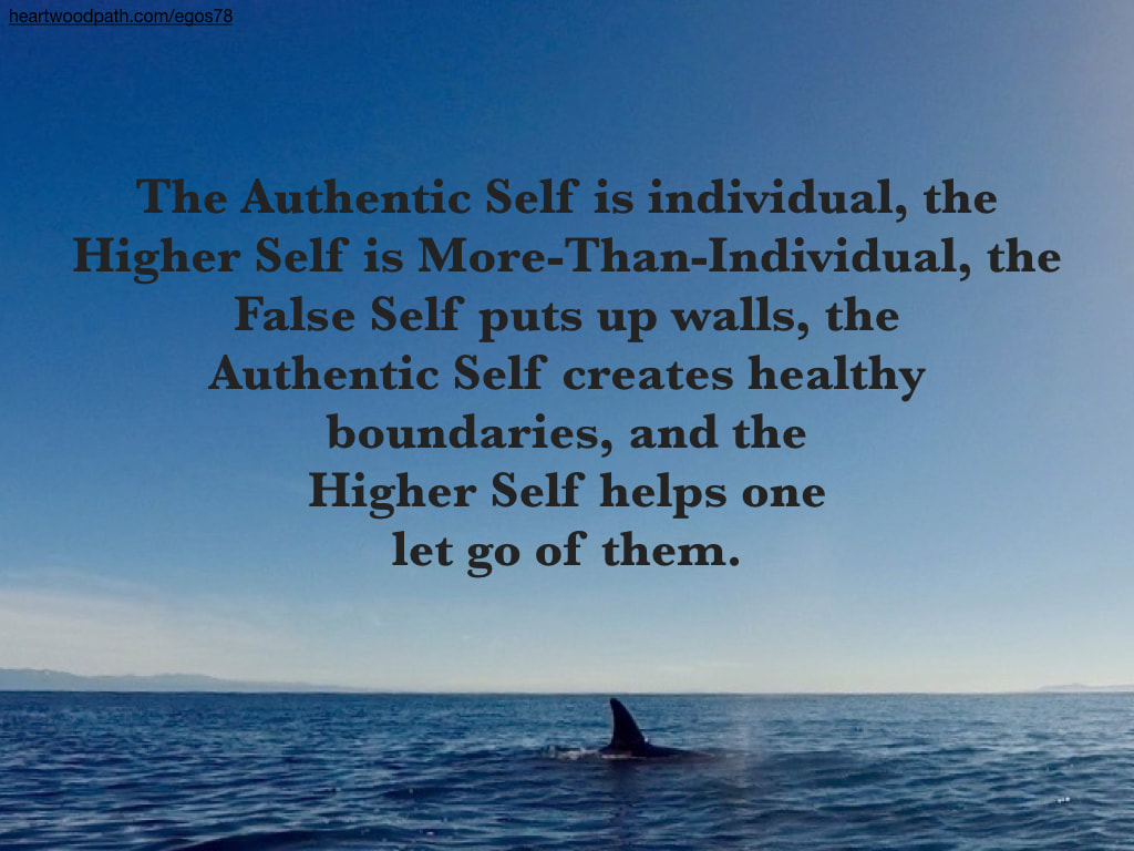 Picture orca fin quote The Authentic Self is individual, the Higher Self is More-Than-Individual, the False Self puts up walls, the Authentic Self creates healthy boundaries, and the Higher Self helps one let go of them