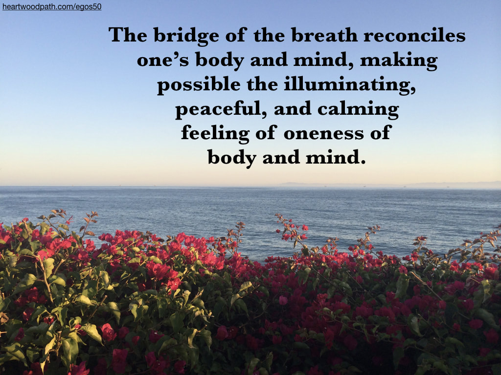 Picture pink flowers ocean island quote The bridge of the breath reconciles one's body and mind, making possible the illuminating, peaceful, and calming feeling of oneness of body and mind