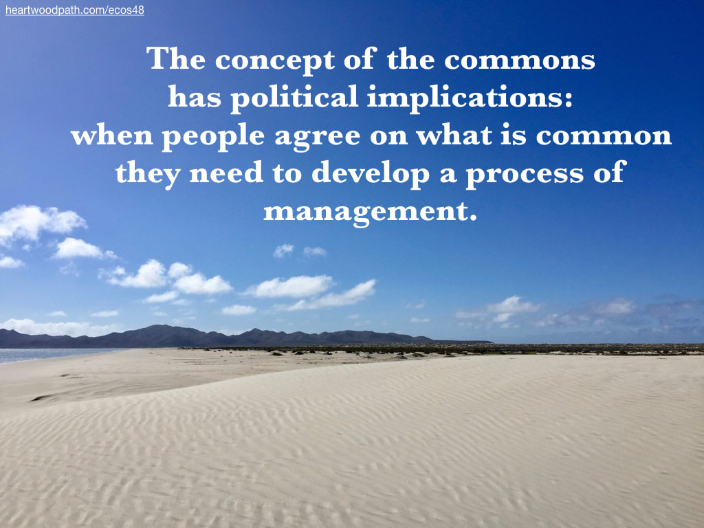 Picture sand dune ripples quote The concept of the commons has political implications: when people agree on what is common they need to develop a process of management