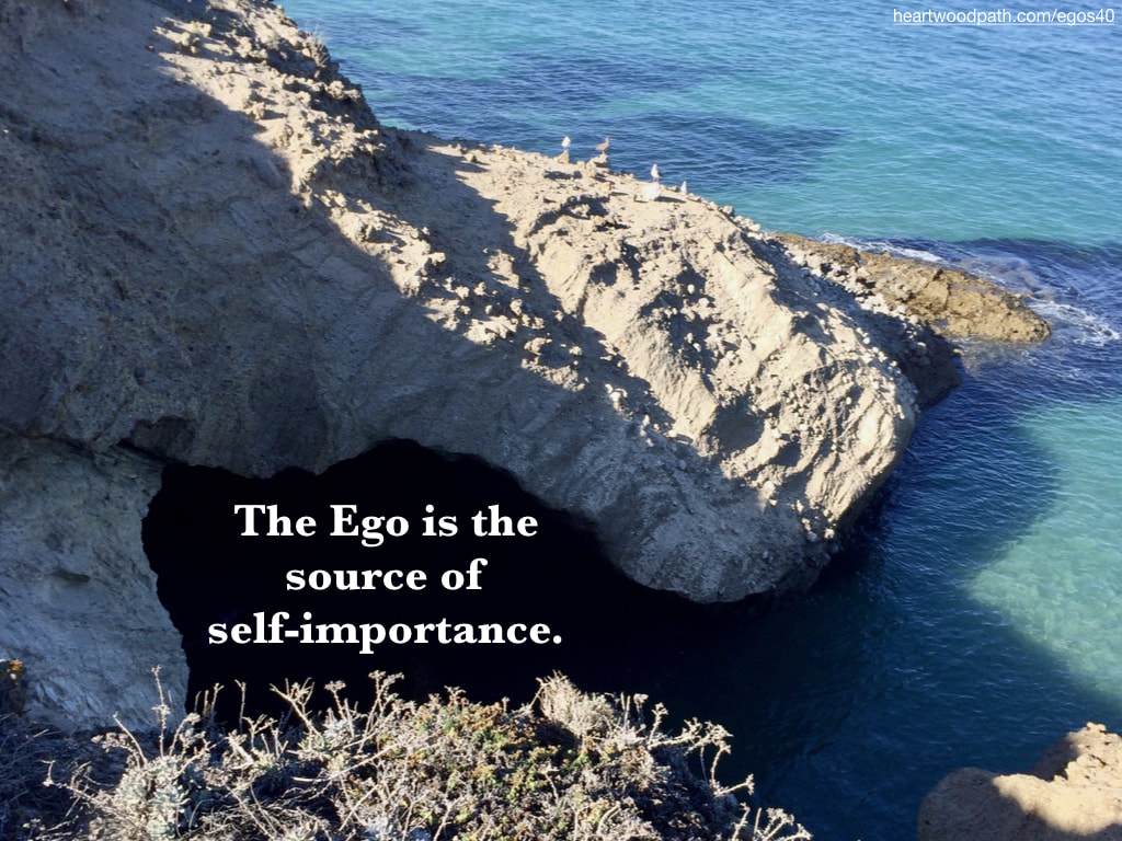 Picture ocean cove quote The Ego is the source of self-importance