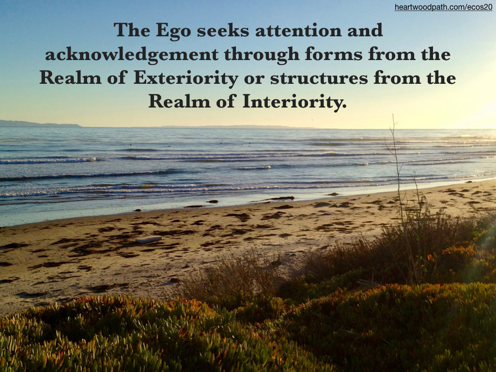Picture ice plant over beach waves and island quote The Ego seeks attention and acknowledgement through forms from the Realm of Exteriority or structures from the Realm of Interiority