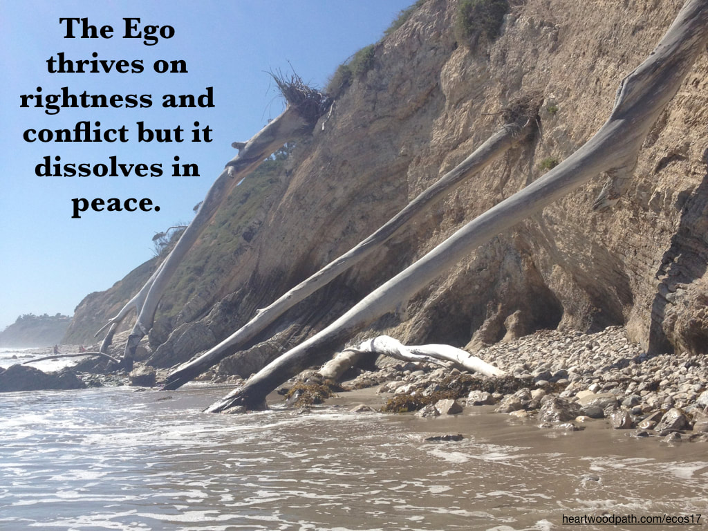 Picture cliff erosion trees fallen ocean quote The Ego thrives on rightness and conflict but it dissolves in peace