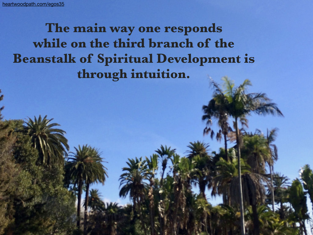 Picture palm trees words The main way one responds while on the third branch of the Beanstalk of Spiritual Development is through intuition