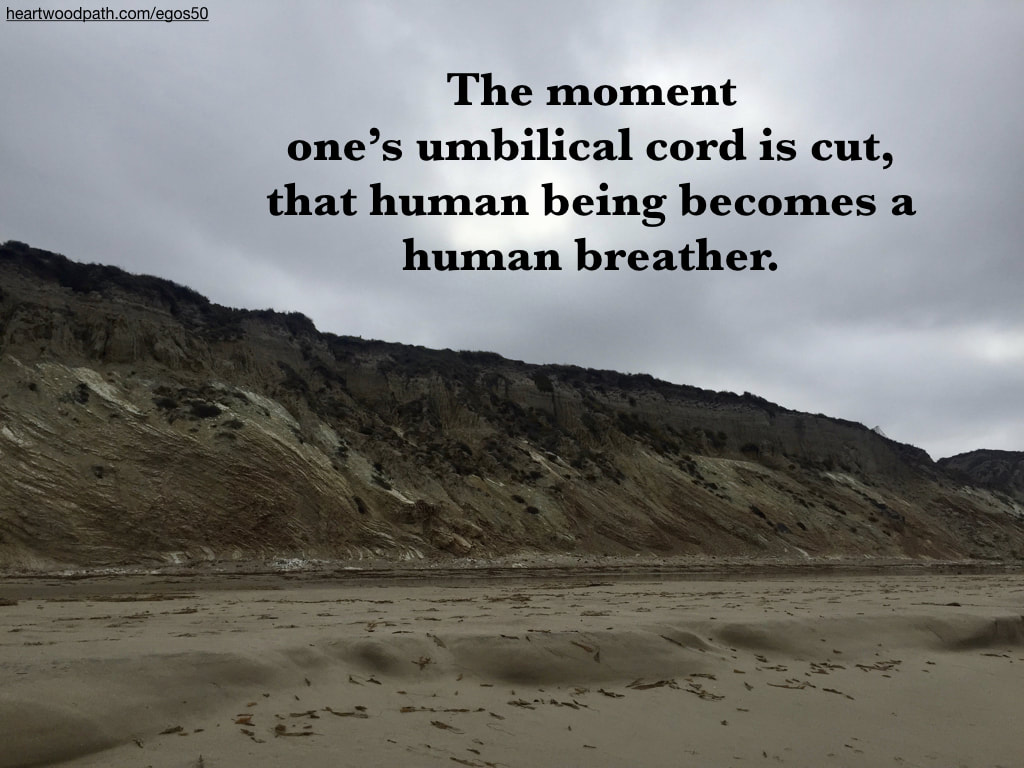 Picture rocky coastline quote The moment one's umbilical cord is cut, that human being becomes a human breather