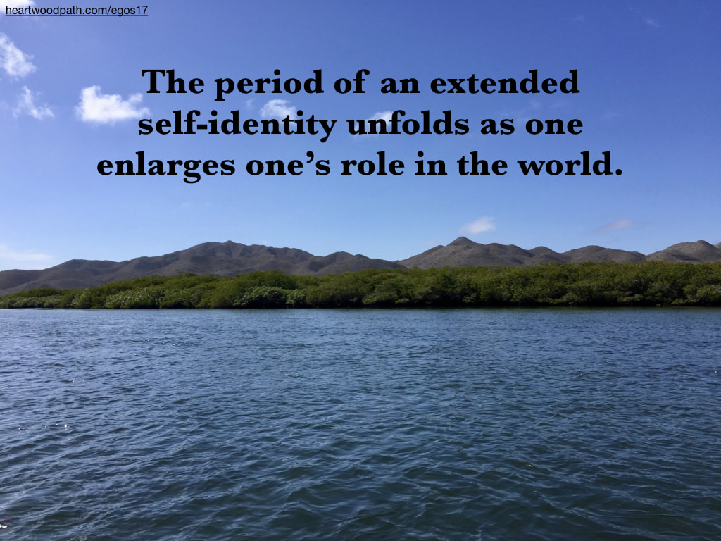 Picture mangrove quote The period of an extended self-identity unfolds as one enlarges one's role in the world