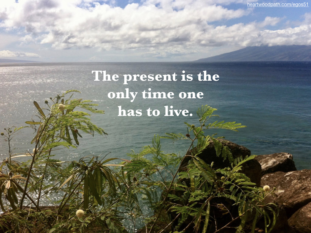 Picture fern ocean quote The present is the only time one has to live