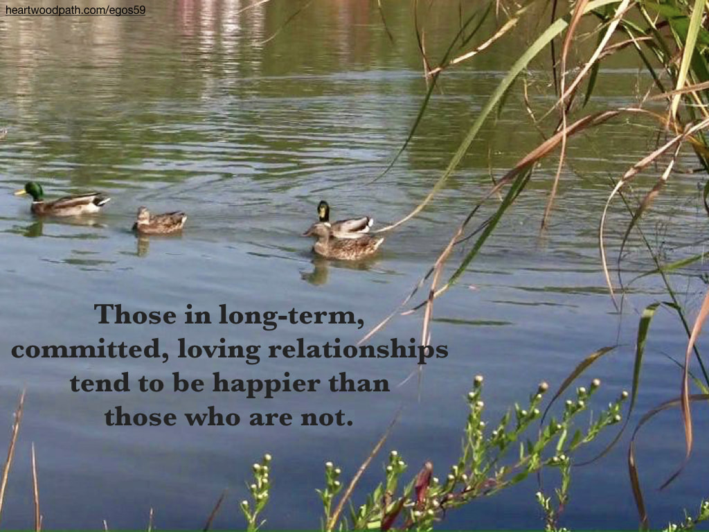 Picture ducks lake quote Those in long-term, committed, loving relationships tend to be happier than those who are not