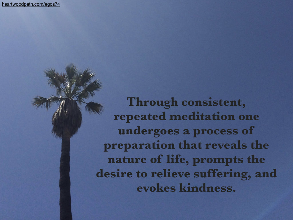 Picture palm tree quote Through consistent, repeated meditation one undergoes a process of preparation that reveals the nature of life, prompts the desire to relieve suffering, and evokes kindness