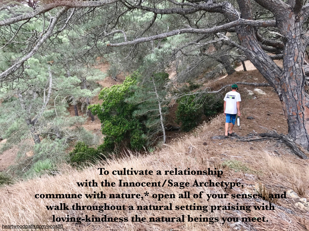 Picture connecting with nature personal growth activity To cultivate a relationship with the Innocent/Sage Archetype, commune with nature,* open all of your senses, and walk throughout a natural setting praising with loving-kindness the natural beings you meet