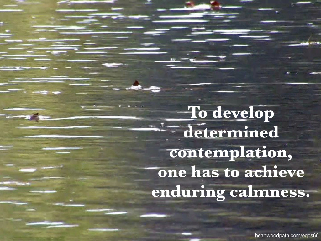 Picture reflection river quote To develop determined contemplation, one has to achieve enduring calmness
