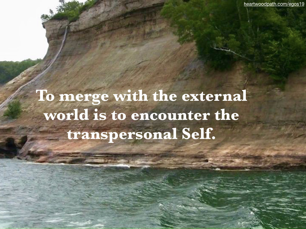 Picture canyon river quote To merge with the external world is to encounter the transpersonal Self