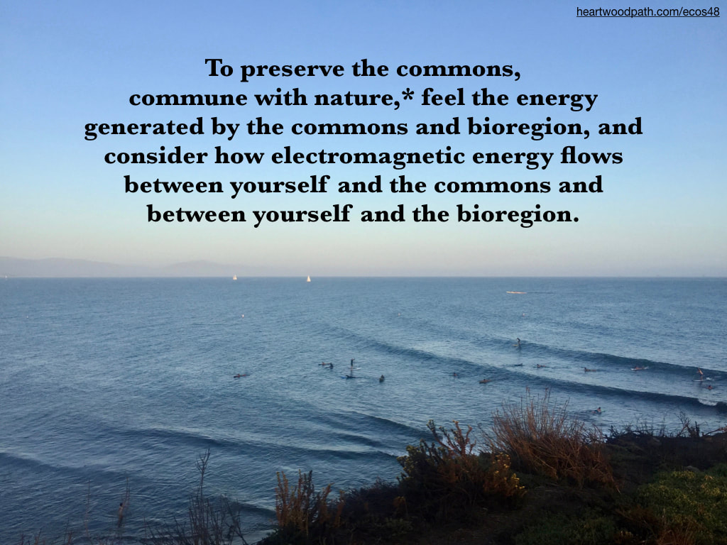 Picture connecting with nature ecopsychology activity To preserve the commons, commune with nature,* feel the energy generated by the commons and bioregion, and consider how electromagnetic energy flows between yourself and the commons and between yourself and the bioregion