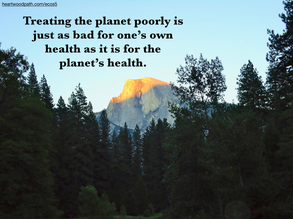 Picture yosemite quote Treating the planet poorly is just as bad for one's own health as it is for the planet's health