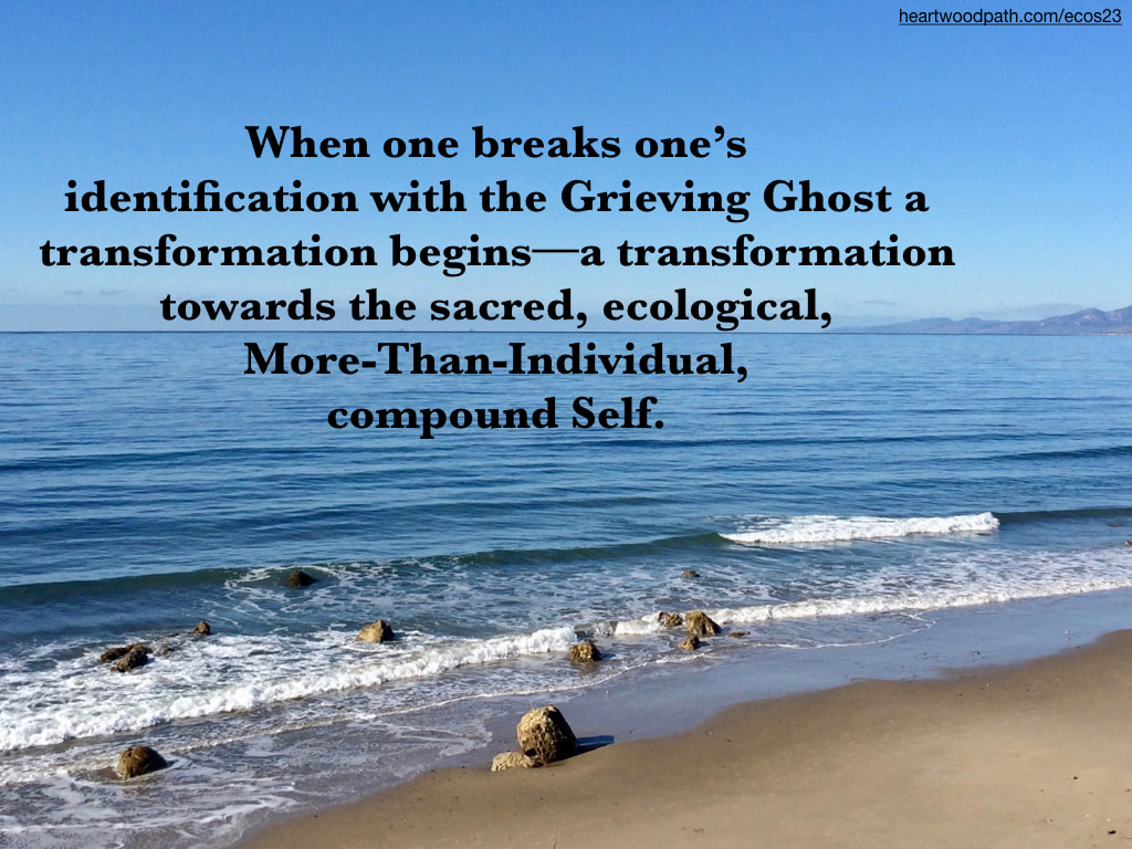 Picture ocean coast beach quote When one breaks one's identification with the Grieving Ghost a transformation begins--a transformation towards the sacred, ecological, More-Than-Individual, compound Self.