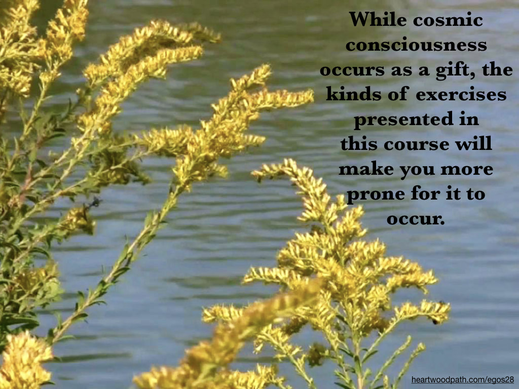 Picture yellow flowers river quote While cosmic consciousness occurs as a gift, the kinds of exercises presented in this course will make you more prone for it to occur