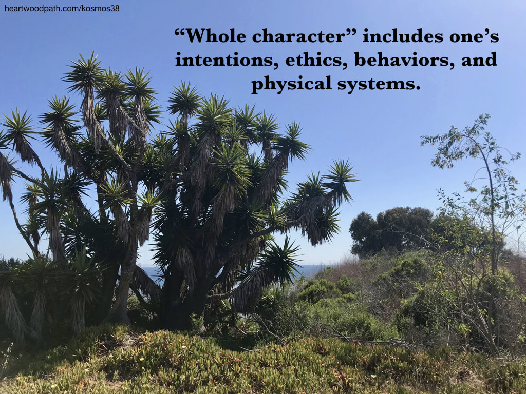 "picture of trees near the ocean and quote ""Whole character"" includes one's intentions, ethics, behaviors, and physical systems"