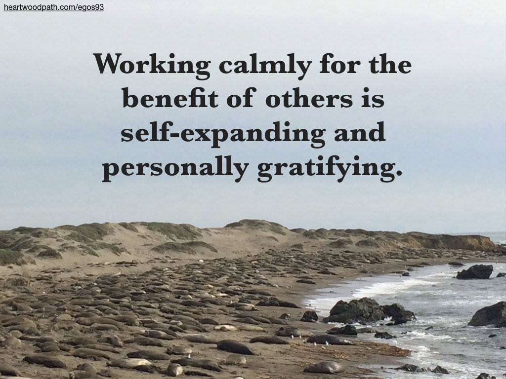 Picture elephant seals beach quote Working calmly for the benefit of others is self-expanding and personally gratifying